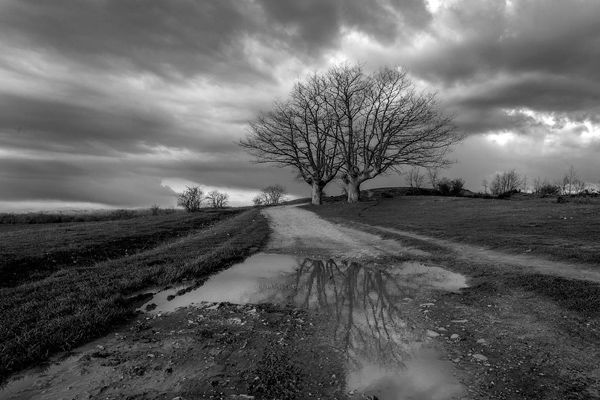 Albergues de Camino Francés